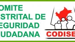 COMITE DISTRITAL DE SEGURIDAD CIUDADANA - CODISEC CACHACHI